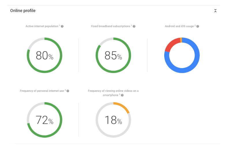 Príklad na využitie nástroja Google Market Finder - Online profil